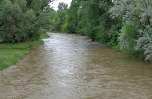 Rising water in Clear Creek