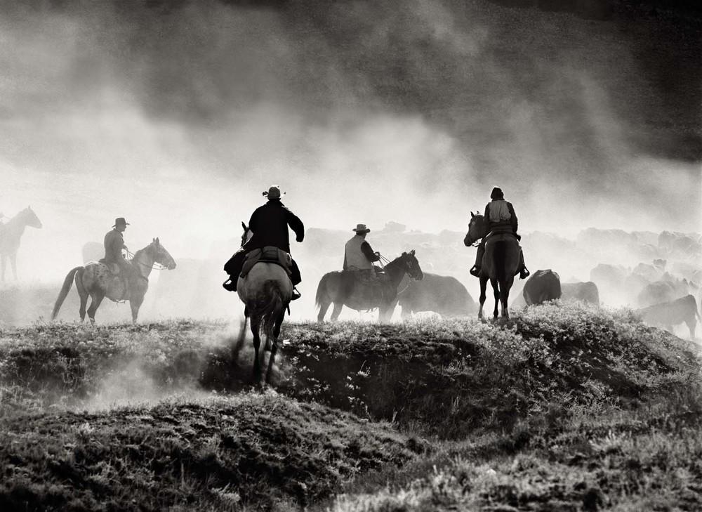 Photo by Allen Birnbach